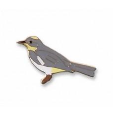 "Warbler, Yellow-rumped ""Audubon's"""