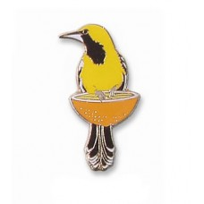 Oriole, Hooded (on an orange) pin