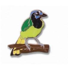 Jay, Green pin