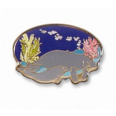 Manatee (cow & calf) pin
