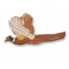 Pheasant, Ring-necked
